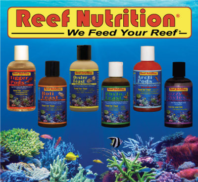 Reef Nutrition